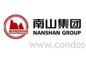 Nanshan group