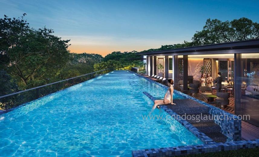 Van Holland Lap Pool 61008160